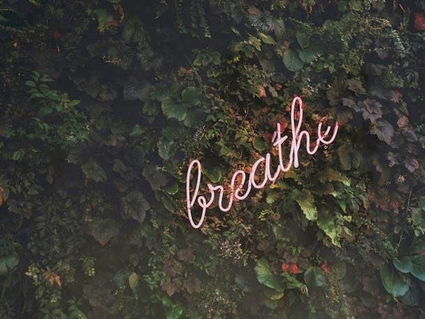 A cursive neon sign says breathe against a background of dense foliage.